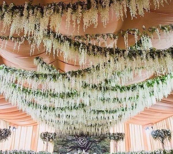 Wisteria-Hanging Garden